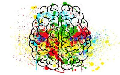 Nossos comportamentos são influenciados por nosso mindset